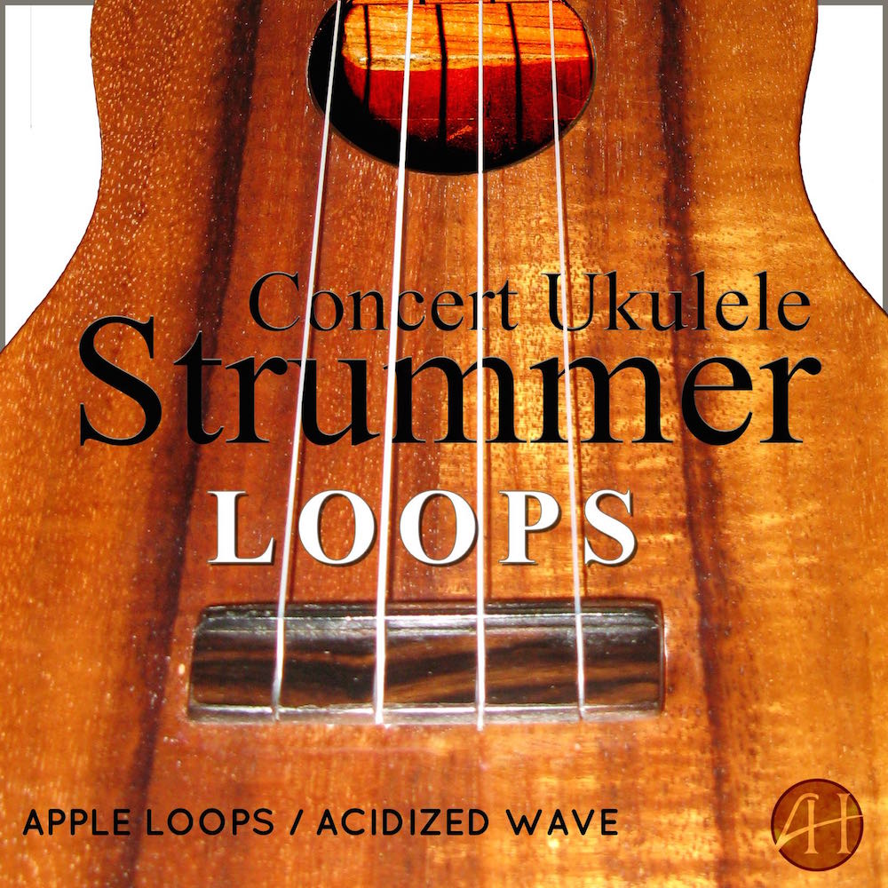strummer-loops-cover